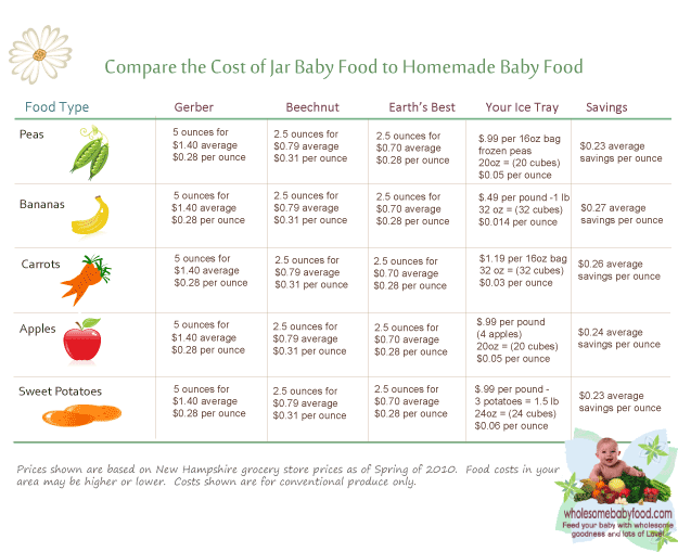 Commercial Baby Food Costs Vs Homemade Baby Food