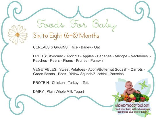 Introducing Solids To Your 6 Month To 8 Month Old Baby